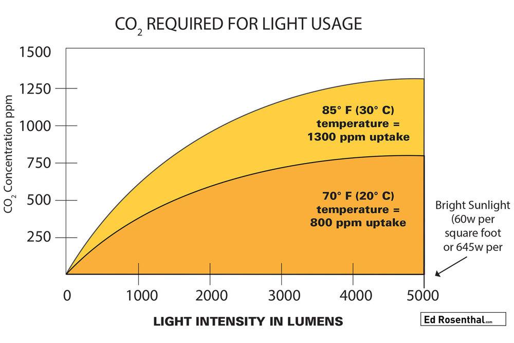 co2-light-useage-ed-rosenthal.jpg