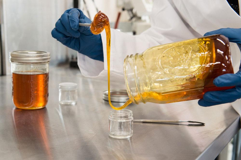 Photo:  Wildseed Oil Lab