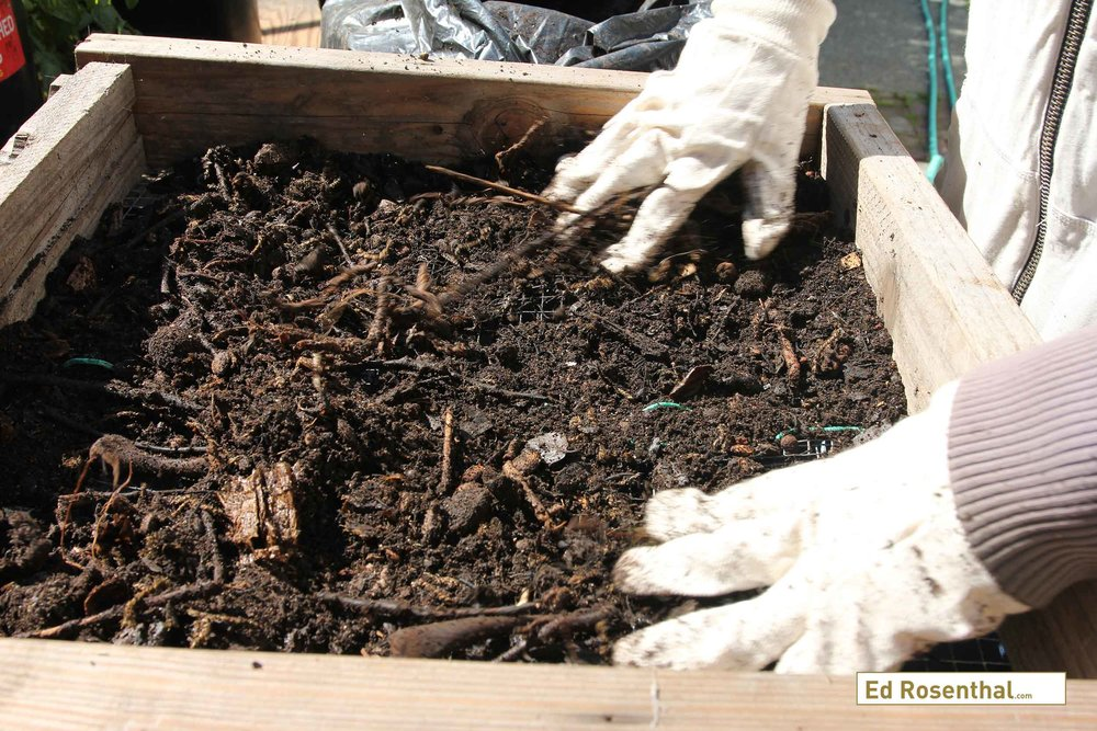 Ripened compost is sieved through a half inch screen.