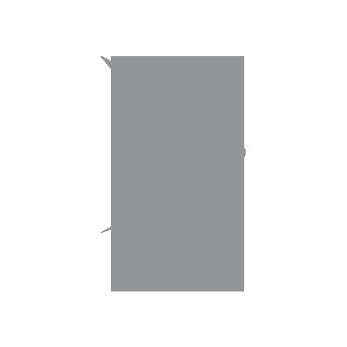 sprint logo gray.png