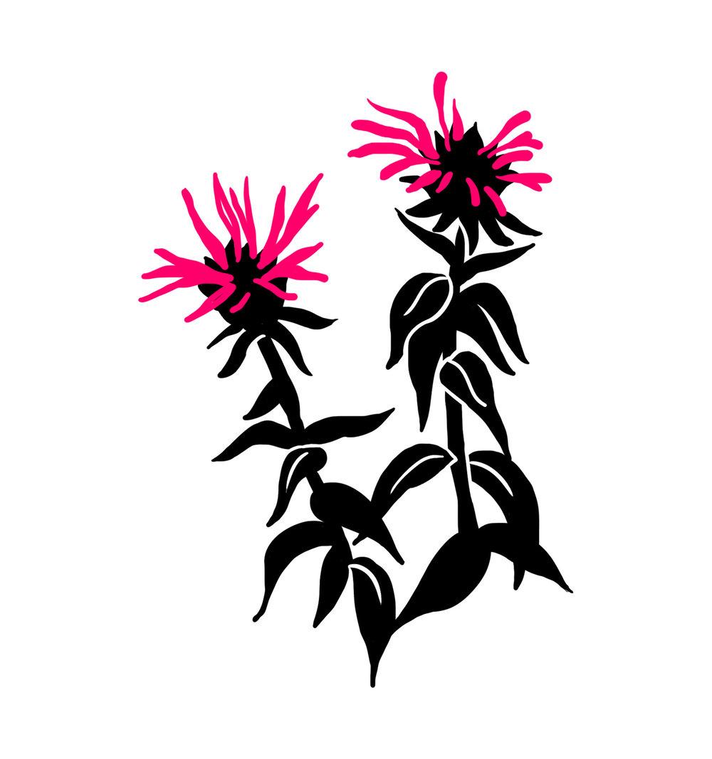 flower-04.jpg