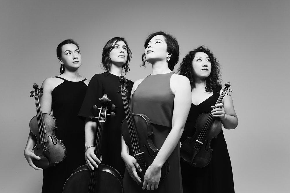 Aizuri Quartet Shervin Lainez.JPG