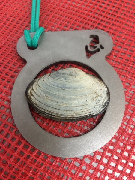"""Stainless steel clam ring used to measure size of clams for 2"""" legal requirement. Cut here in Maine with our GOM logo."""