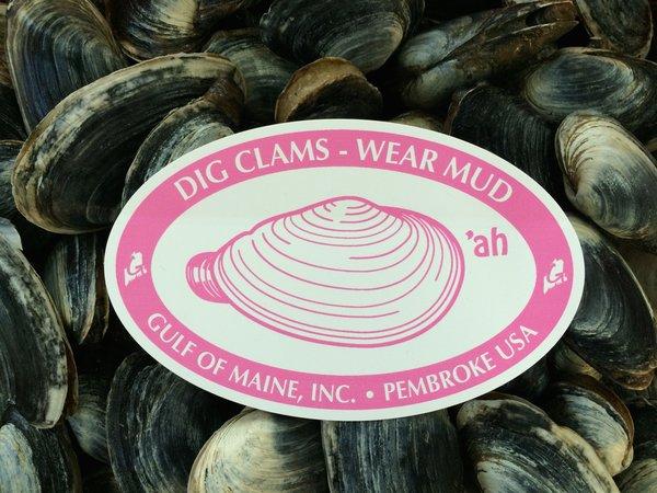 clam.jpg