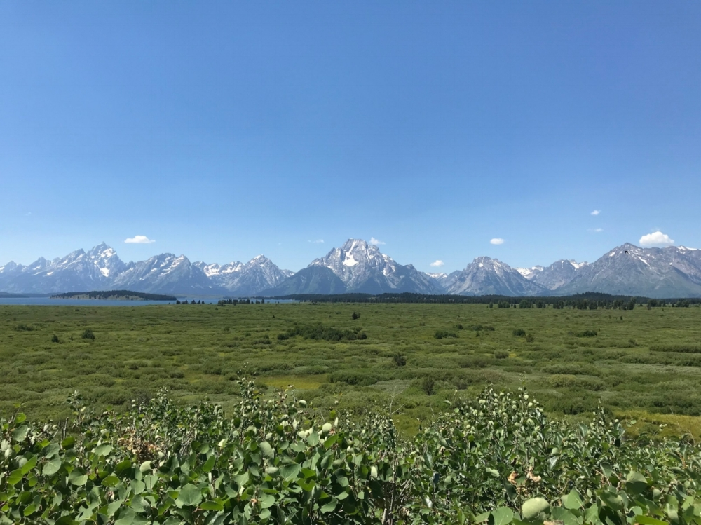 View from the Jackson Lake Lodge