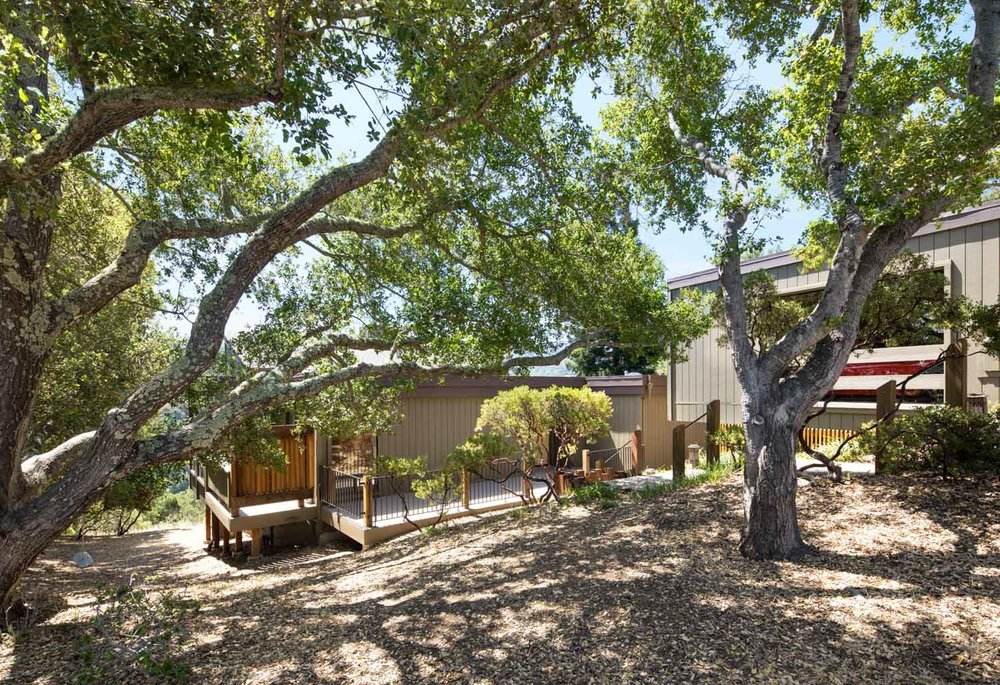 10 Franciscan - front through trees.jpg