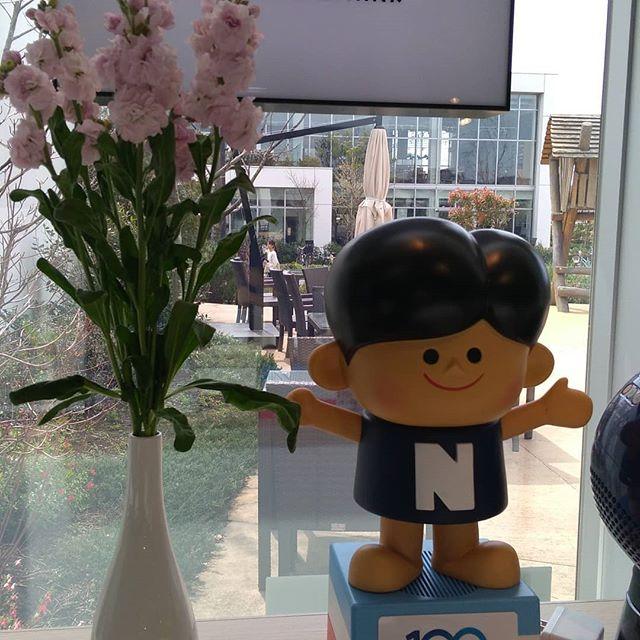 お客様からお花をいただきました♪早速、飾っています~。#クラシンク#kura_think