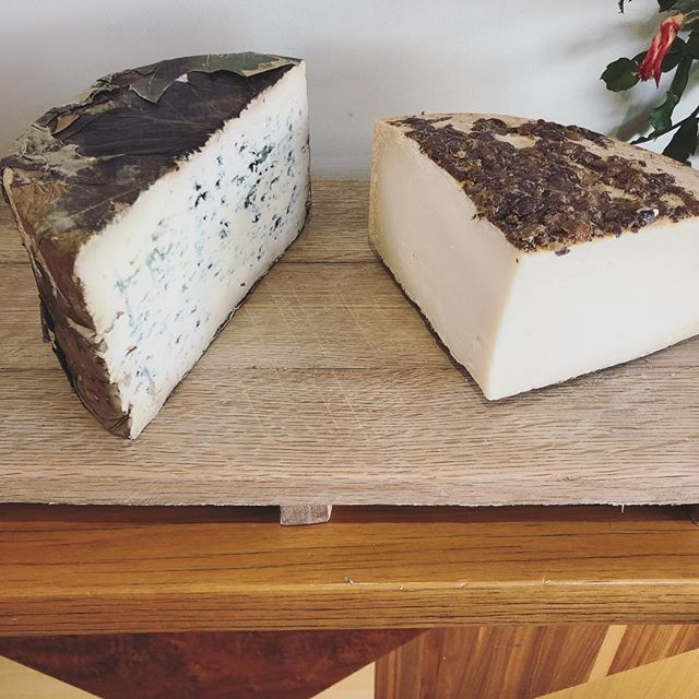 Italian semi-hard Goat cheese steeped in Traminer Marc or Spanish Blue wrapped in Chestnut leaves? 🤔🧀 #perezinumbriaco #azuldevaldeon #harryandfrankie