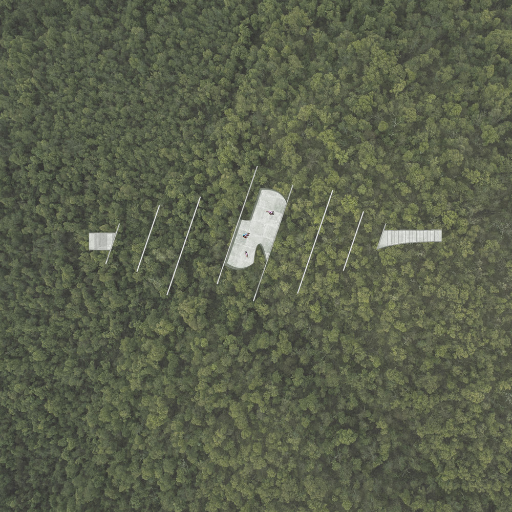 aerial view_sq.jpg