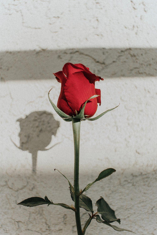 valentines day conversation galentines day quilt blog