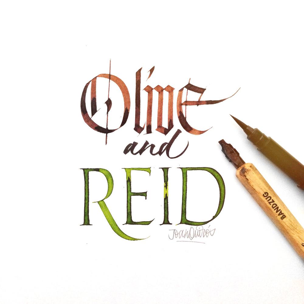 Olive-and-Reid
