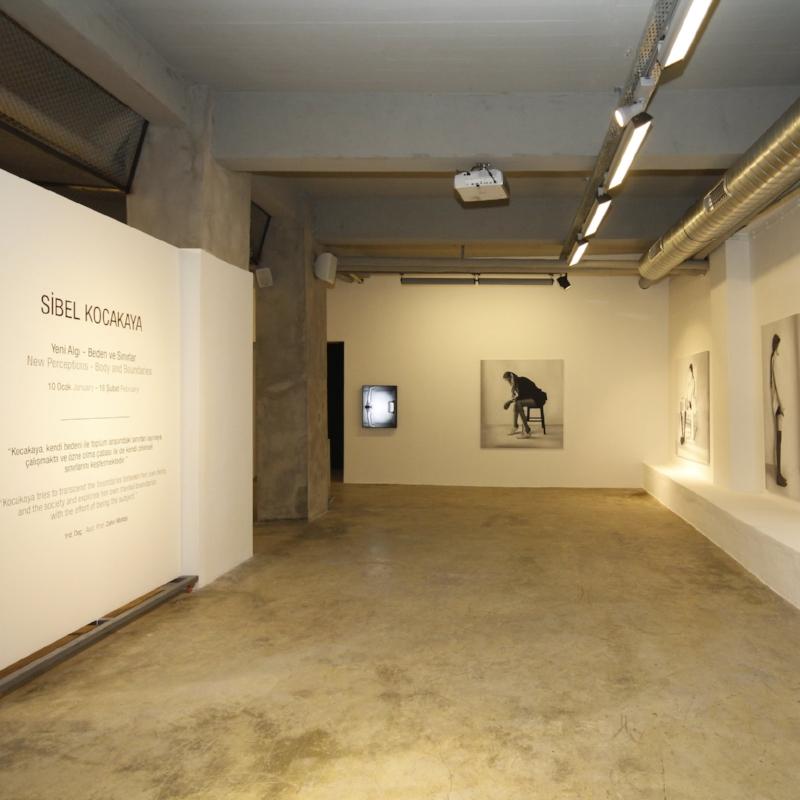 Yeni Algı - Beden ve Sınırlar    (2014)   Kocakaya'nın son dönem çalışmalarını içeren sergi, sanatçının tepkisel dışavurumlarını kendi bedeni üzerinde kurguladığı durumlara dönüştürmektedir. Sibel Kocakaya'nın resim, fotoğraf ve video çalışmalarından oluşan kişisel sergisi bireyin içinde bulunduğu durumlar üzerinden ruhsal eylemlerinin ve bedensel tepkilerin dışavurumuna odaklanmıştır. Sanatçı çalışmalarında kendi bedenini model olarak kullanırken yüz ifadelerini de yok ederek kimliksiz yeni bir beden üretmektedir.