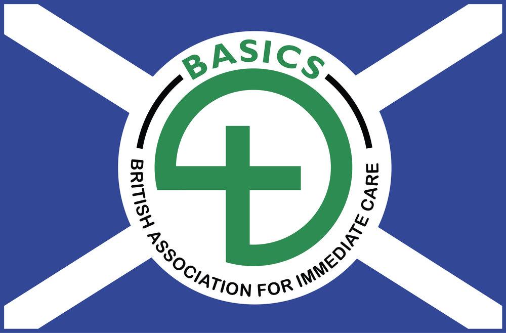 BASICS logo.JPG