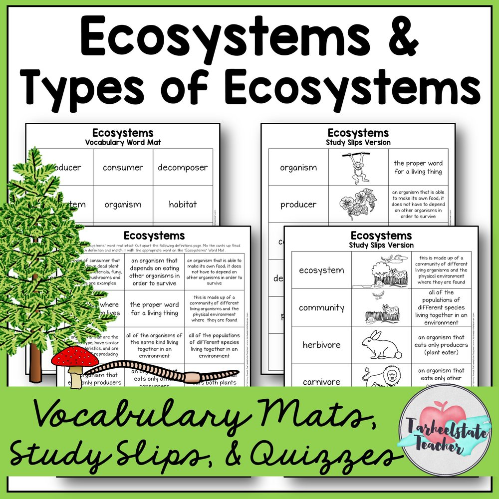 Ecosystems Vocabulary Mats.JPG