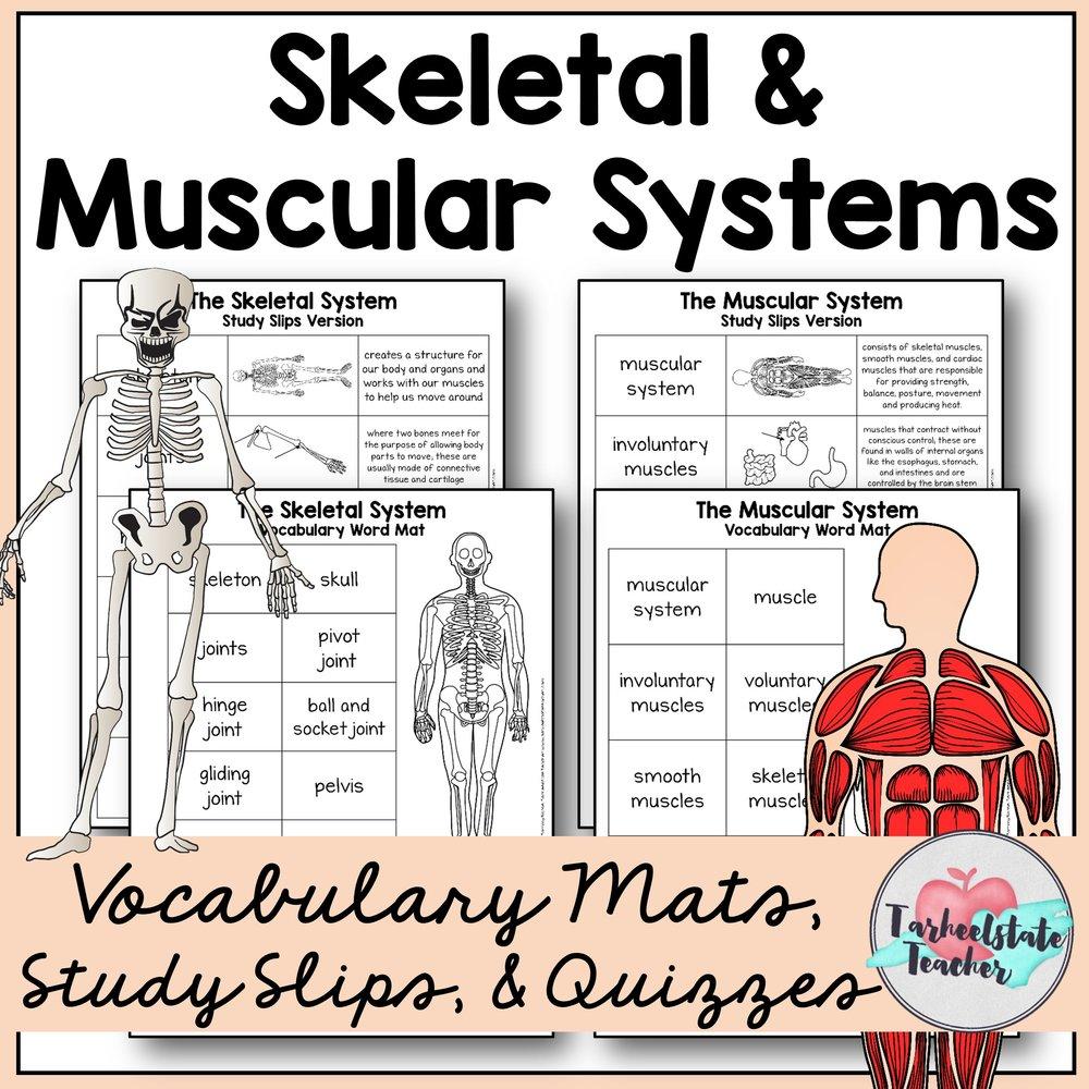 Science Vocabulary Thumbnails.jpg