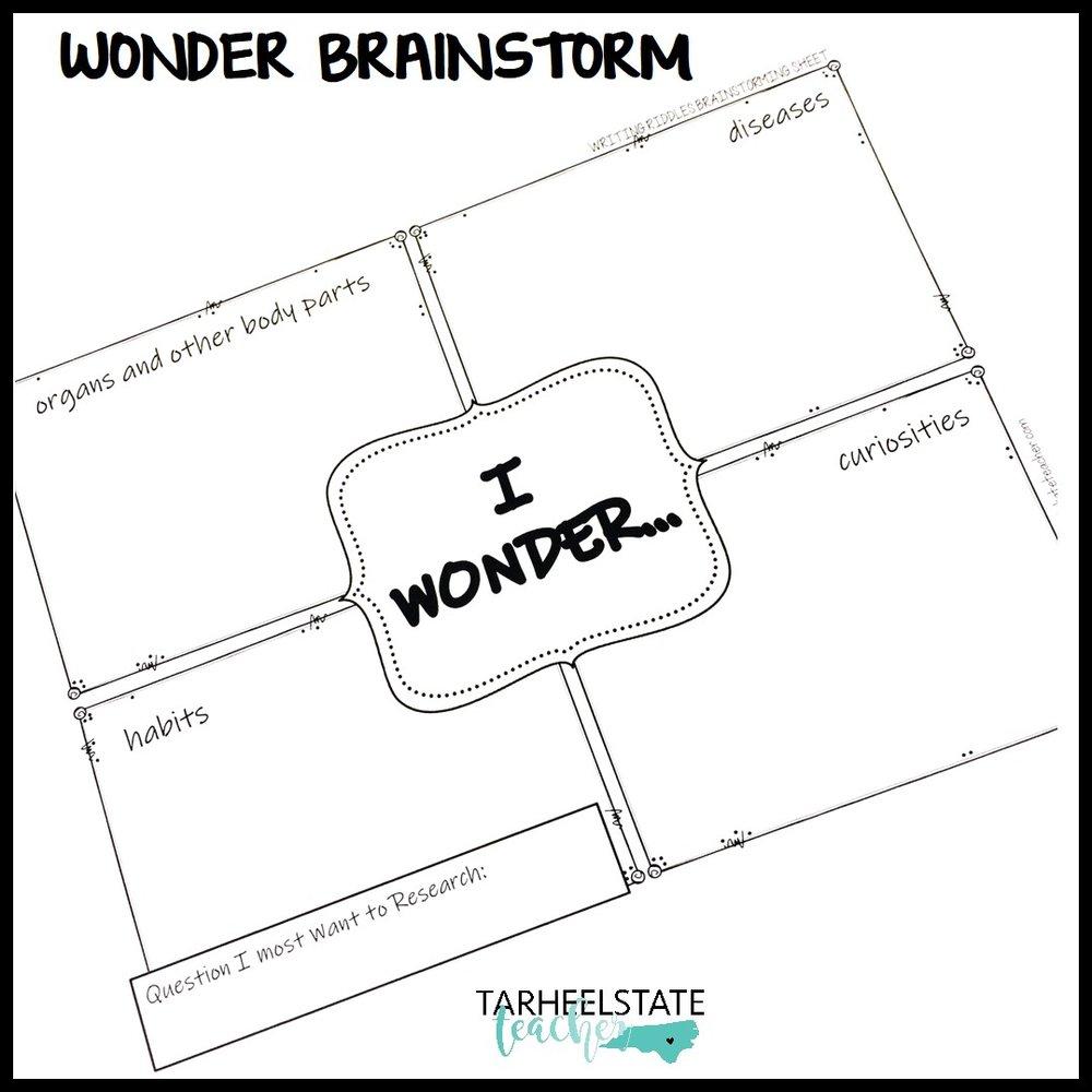 mini research wonder brainstorm.jpg