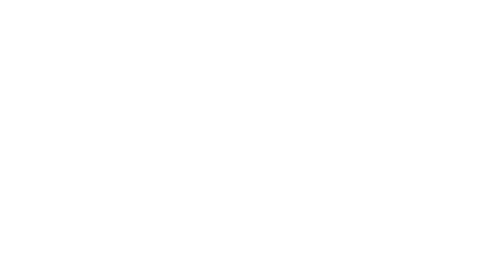 able South Carolina logo