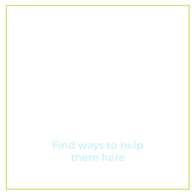 "Graphic of a magnifying glass with text below it that says ""What resources are available to people with disabilities? Find ways to help them here"""