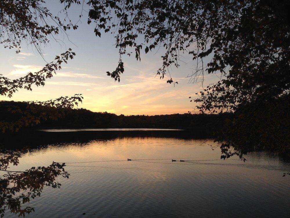 Jamaica Pond, near my home in Boston.