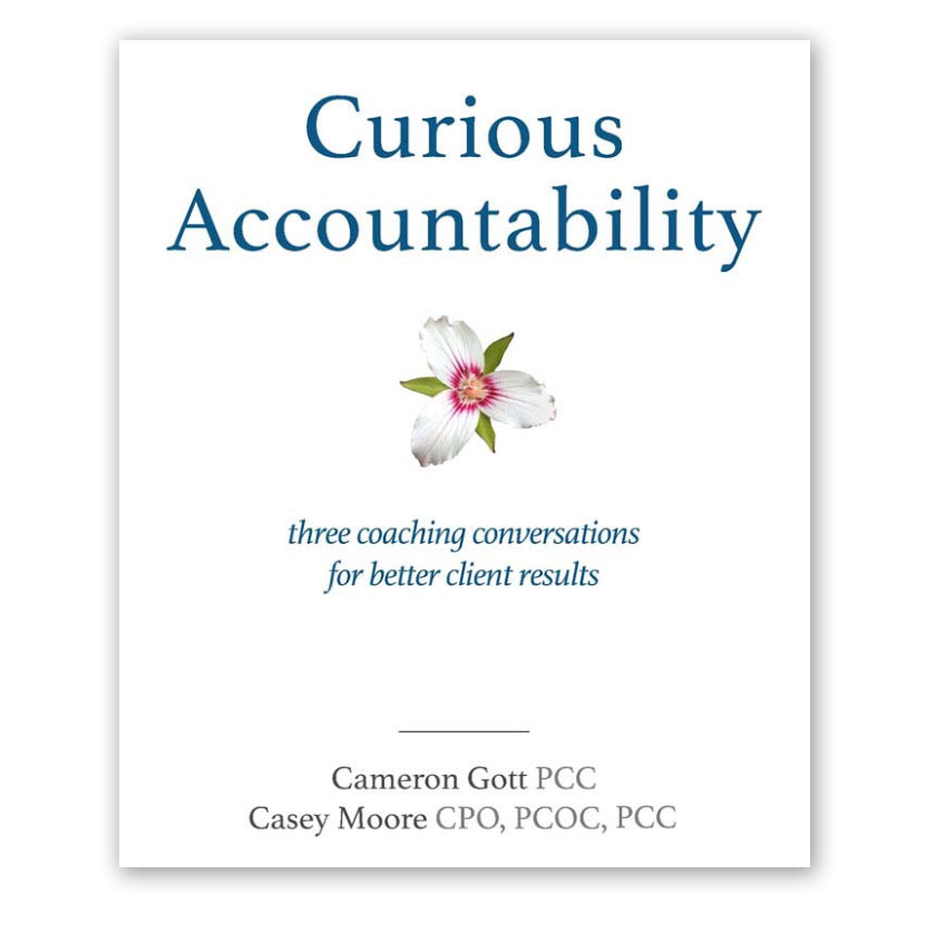 curious-accountability-ebook.jpg