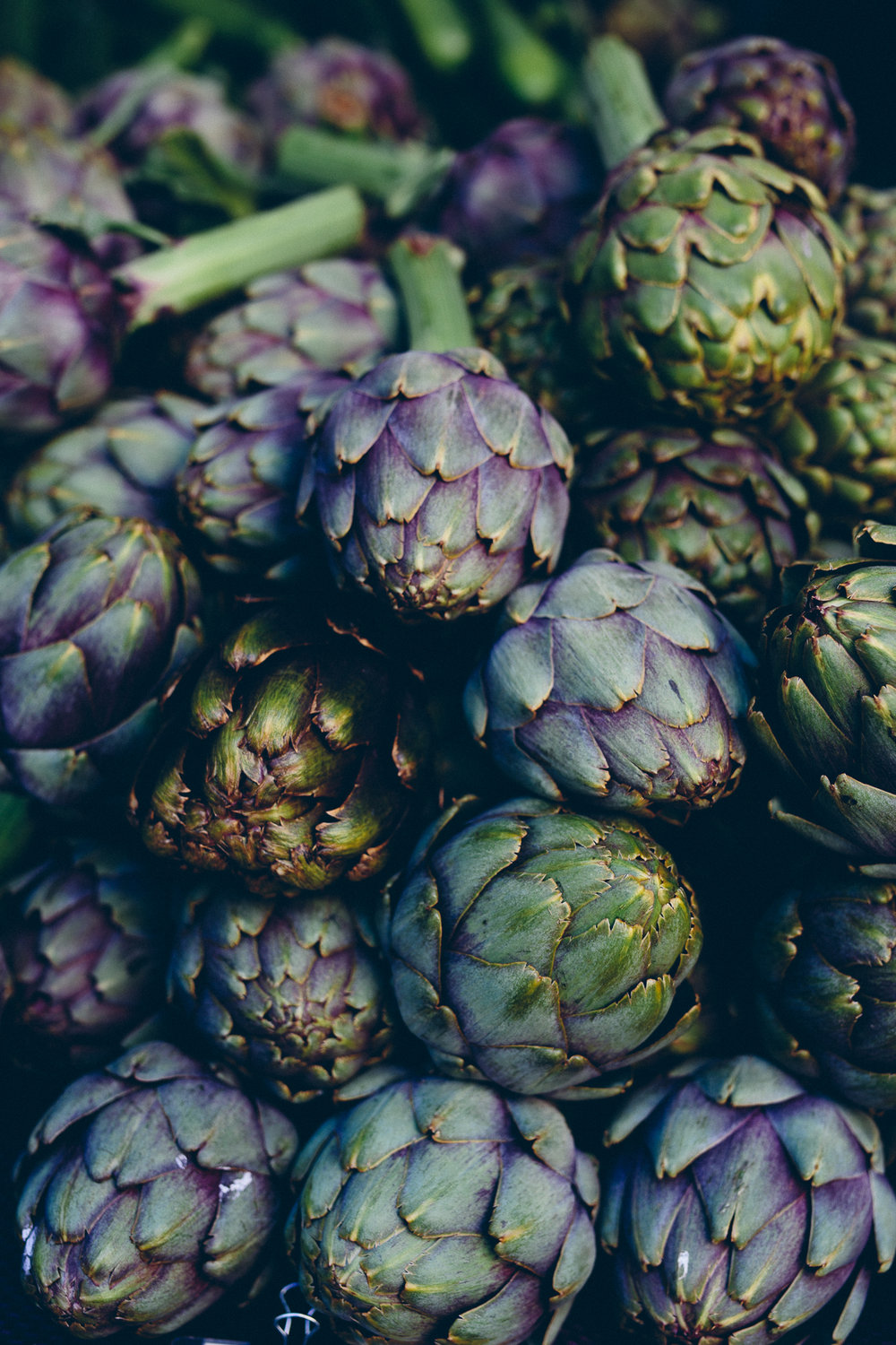Artichokes from Portland Farmer's Market, July 2017