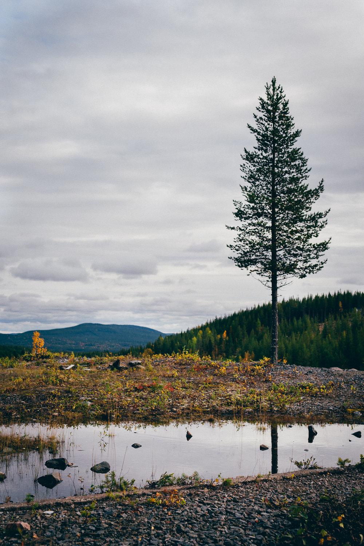 Lavergruvan, Sweden, September 2017