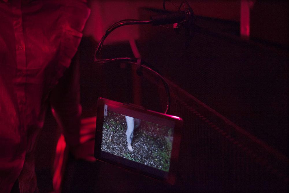 Roxman Gatt-   Polystrene Sheets /  Naked Angels Singing /  Deep Ddeep Inside /  FAN-FICTION