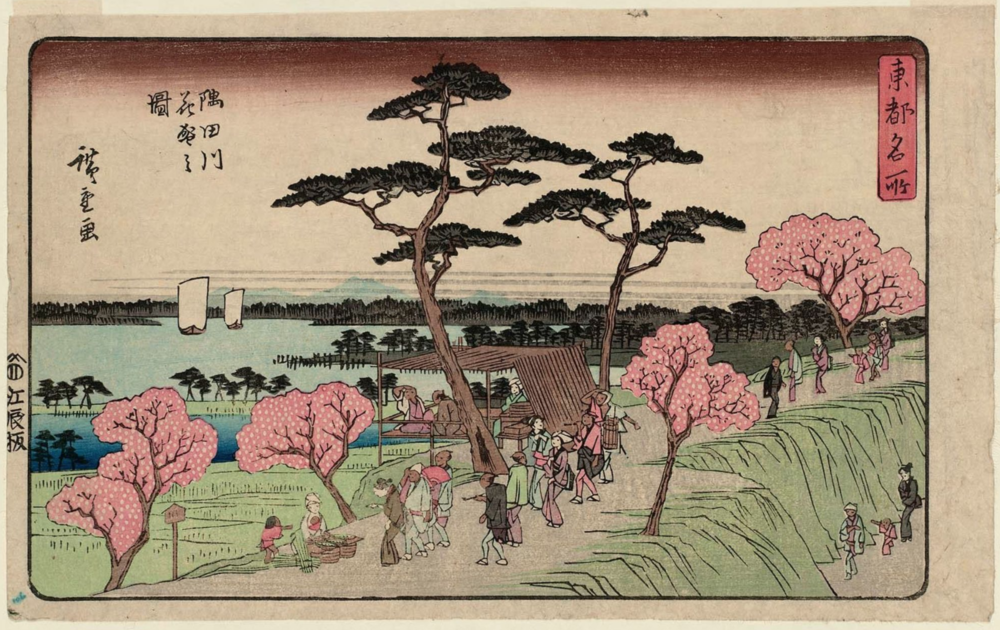Hiroshige | Cherry Blossoms in full bloom along the Sumida River | 1843 | Museum of Fine Arts Boston