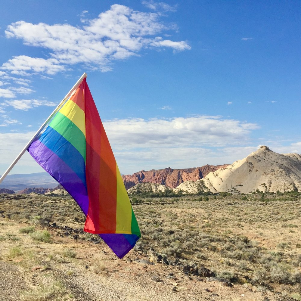 Thank you St. George - 69 Washington County residents and businesses signed up for rainbow flags for Southern Utah Pride Week and raised nearly $1,000 for the LGBTQ Resource Center at Dixie State University.