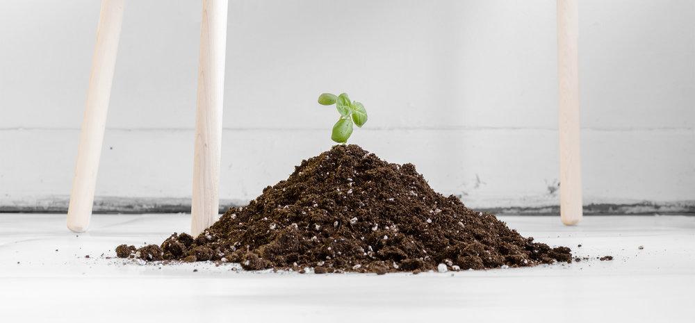 planters_allstudio