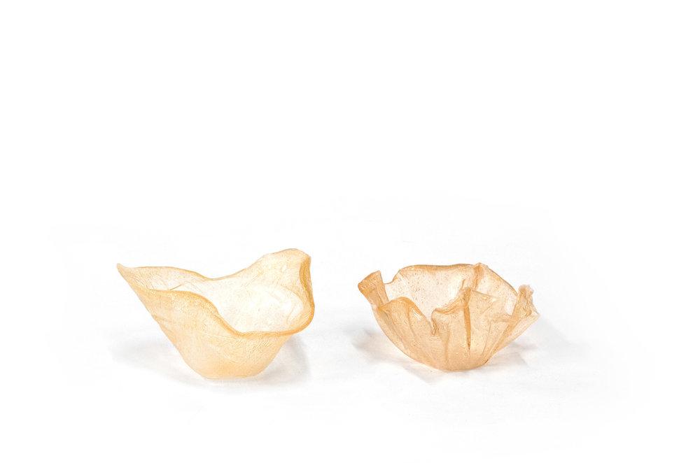 Polymère à base de pomme de terre