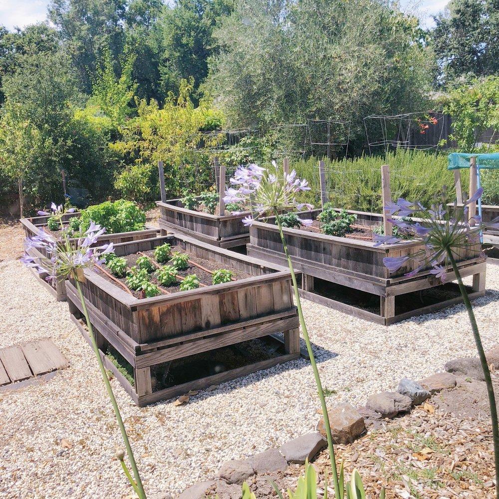 Sonoma Vegetable Garden.jpg