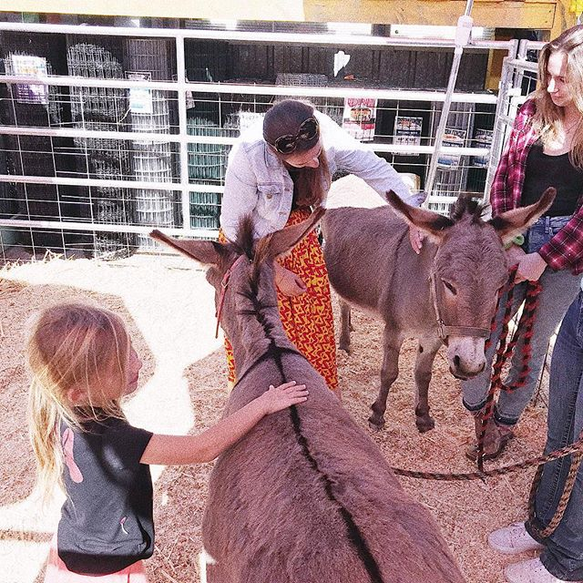A little throwback to the time Poppy and I got to pet the donkeys! My list for the Brits in the Bay farm has subsequently grown from goats and ponies to goats, miniature pigs, ponies and donkeys. It's a no on cows though as after petting the donkey, we attempted to pet a cow, the cow attempted to eat my skirt, it was all a little awkward! ••• #britsinthebay #thebaycollective #thebossbabesociete #bayarea #bayarealife #sfbayarea #siliconvalley #siliconvalleylife #norcal #california #californialiving #californiaadventure #westcoastliving #americandream #expat #expatlife #expatfamily #expatblogger #bayareablogger #gypsysoul #nomad #nomadnomore #mumlife #livingabroad #naturefamily #adventurefamily #halfmoonbay #donkey #animallover