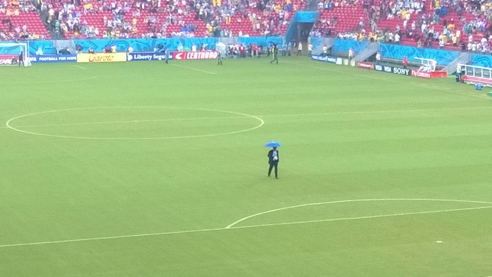 FIFA match commissioner surveys the state of the pitch to see if it's green lit for kick-off