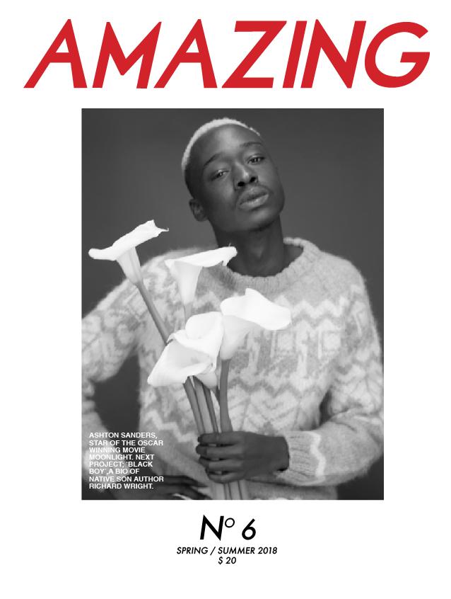 Amaizing Mag_5 (3) (1)cover-01.jpg