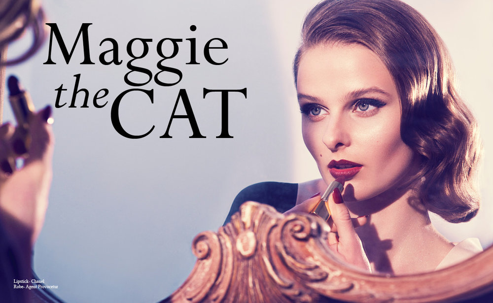 maggiethecat-new2.jpg