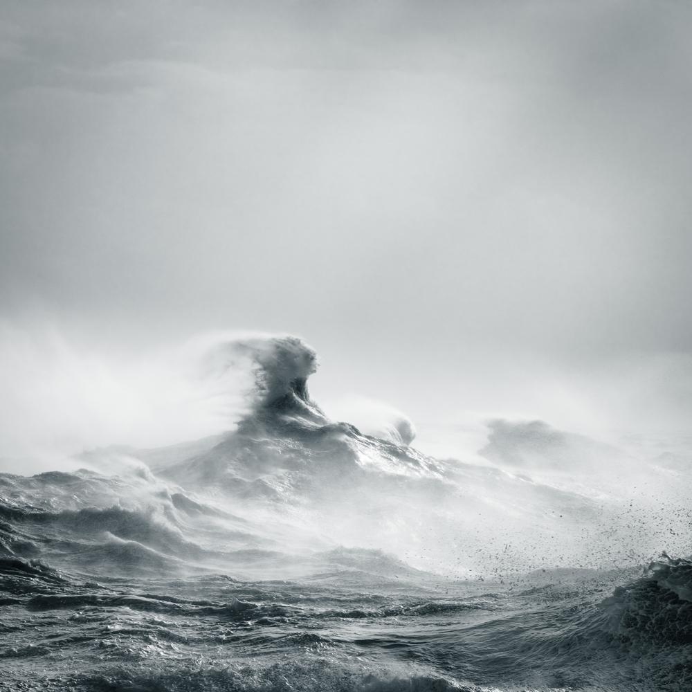 Poseidon Rising, Rachael Talibart