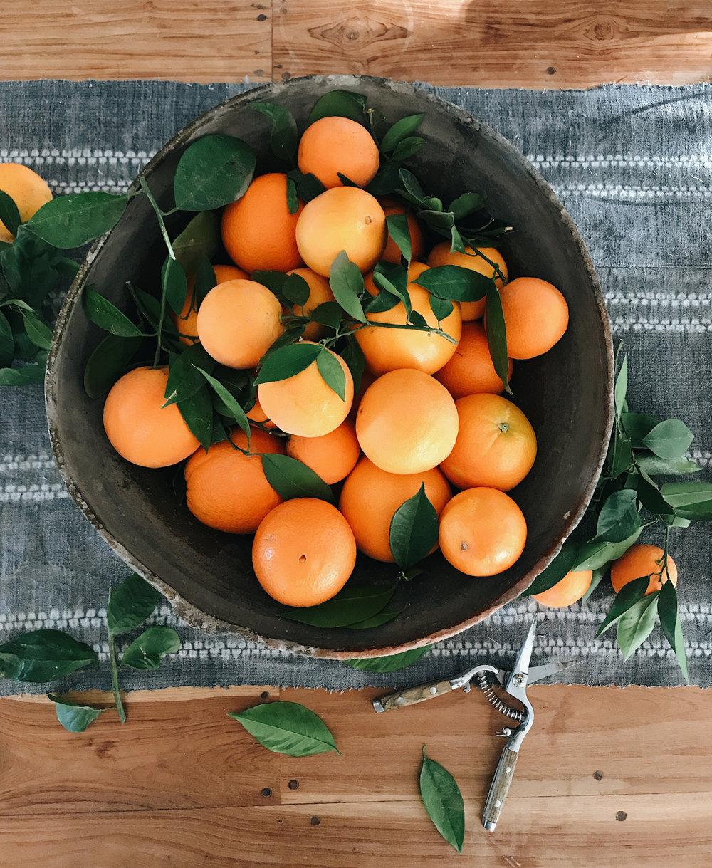 Heather Bullard | Citrus
