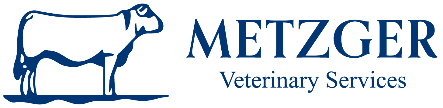 Metzger Vet | Veterinary Clinic | Linwood | Chesley | Vet Services | Livestock | Ontario | Canada