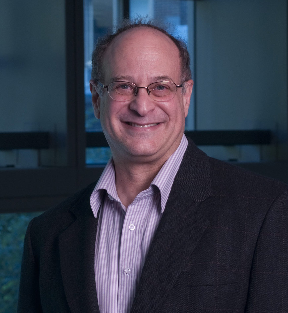 Prof. David Srolovitz elected to the National Academy of Engineering.jpg