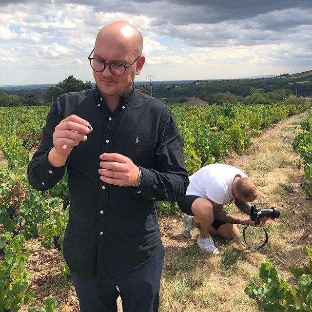 I höstas besökte vi Beaujolais, smakade druvor och pratade med vinodlare. Idag håller vi franskt fest och firar släppet av beaujolais nouveau 2018. Kom förbi baren ikväll och prata vin med oss. Välkomna!