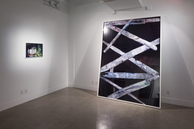 Kelly Barrie: Parrallel Play,  installation view, Gallery Wendi Norris, San Francisco, CA, May 2 – June 29, 2013