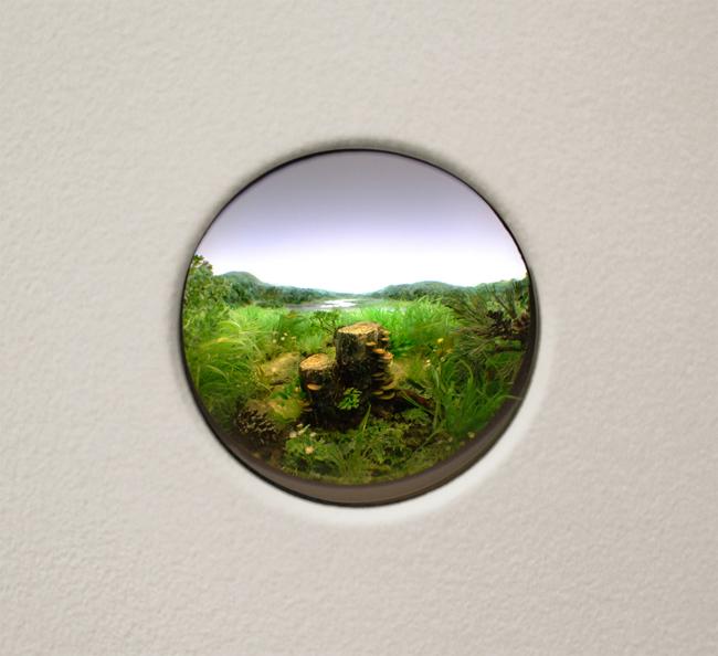 Patrick Jacobs,   Double Stump with Red Banded Brackets,  2013, Styrene, acrylic, cast neoprene, paper, ash, talc, starch, polyurethane foam, acrylite, vinyl film, wood, steel, lighting, BK7 glass, Diorama viewed through 2 in. (5 cm) window, 11 1/4 x 14 3/4 x 9 1/4 inches (29 x 37 x 24 cm)