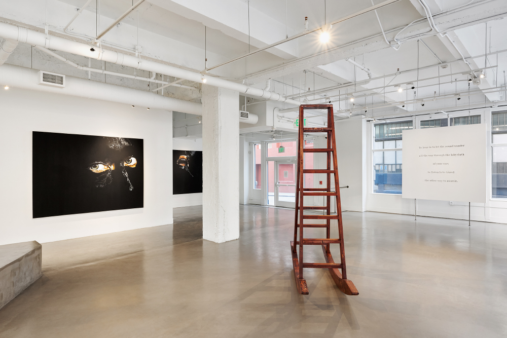 Ana Teresa Fernández: Erasure,  installation view, Gallery Wendi Norris, March 10 - April 16, 2016, photography: John Janca