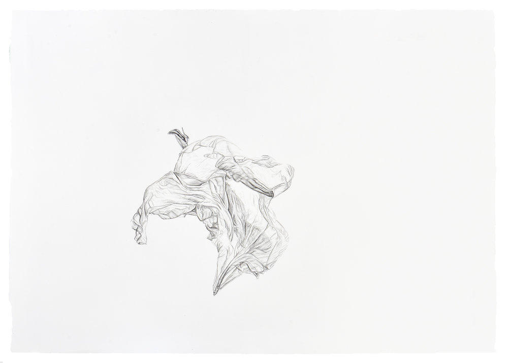 Ana Teresa Fernández,  Gauging Gravity 1 (performance documentation),  2018, Graphite on paper, 29 1/2 x 42 inches (74.9 x 106.7 cm)