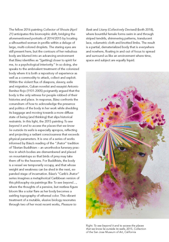 baez brochure_12 pg_web_Page_09.jpg