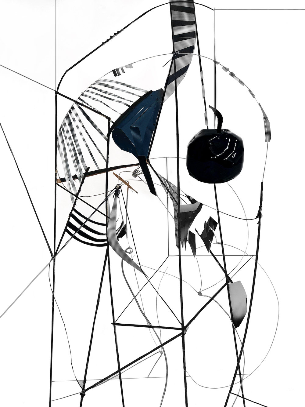 Yamini Nayar,  Wing-Bone , 2018, Hahnemühle Bartya Pigment Print, 40 x 30 inches (101.6 x 76.2 cm), Edition of 5 + 2AP