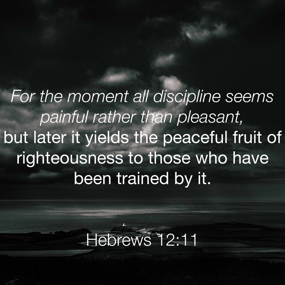 6 - Hebrews 12-11-01.jpg