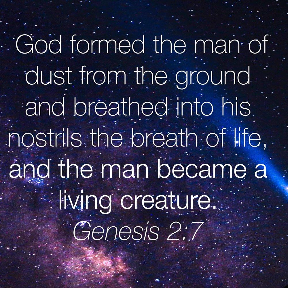 15 Genesis2-7-01.jpg