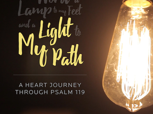 2016 Light My Path Title.png